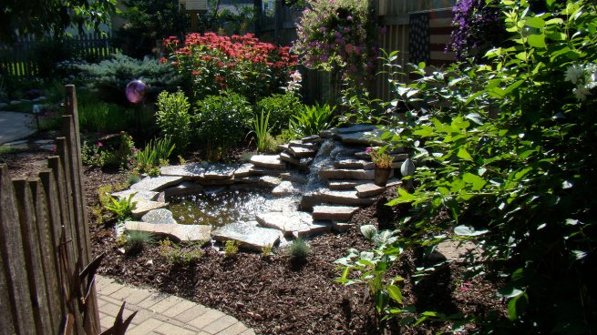 POND BY SPRINGHETTI LANDSCAPING