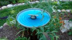 GARBAGE CAN LID BIRDBATH